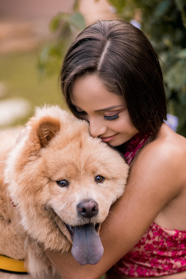 best dog breeds for tiny living